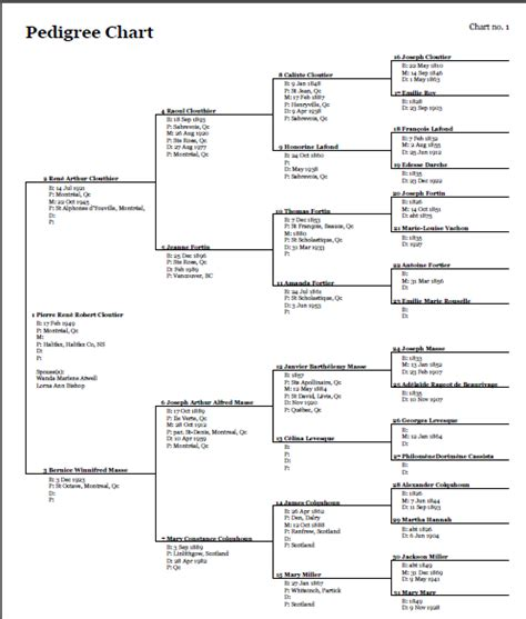 Pedigree Charts Worksheet progeny genealogy pedigree family record index