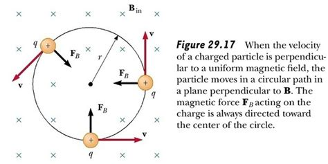 in the science and of organic magnetism classic reprint books what does work when a magnet raises a needle quora