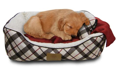 american kennel club dog beds american kennel club dog bed gift set deal of the day