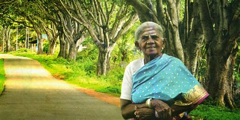 Thimmakka Biography In Hindi | saalumarada thimmakka mother of trees