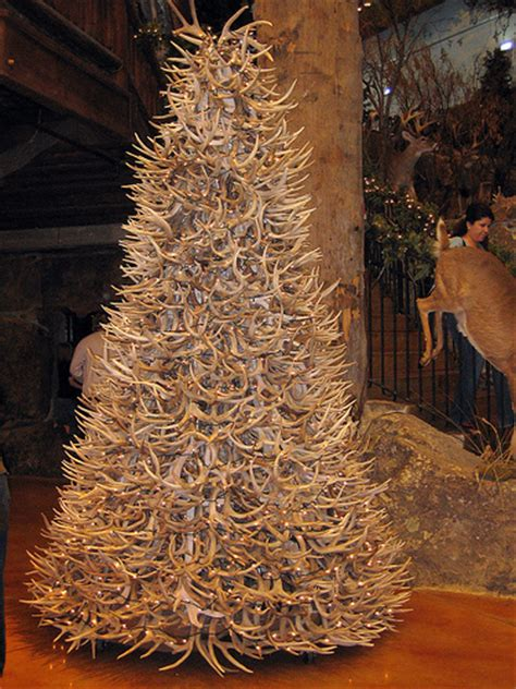 a deer antler tree only in outdoor world by ashleyv