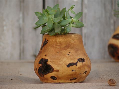 indoor wood planter wood succulent planter indoor plant holder turned wood