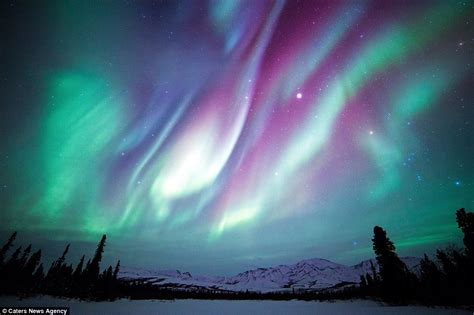 denali national park northern lights images of america s national parks in winter daily mail