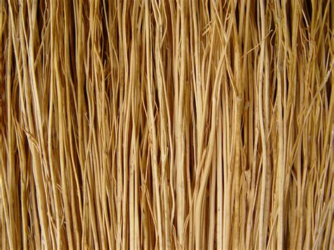 laminate floor broom 28 images long handled indoor