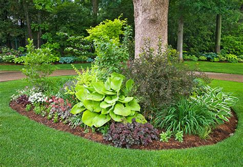 Landscape Ideas Using Hostas Shade Garden Ideas Hostas Photograph Easy Ways To Use The