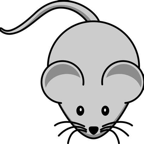 mice clipart mouse clipart transparent png stickpng