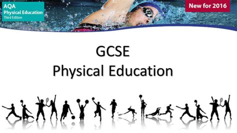 aqa gcse physical education 0198370253 high physical education lesson plans and activities tes