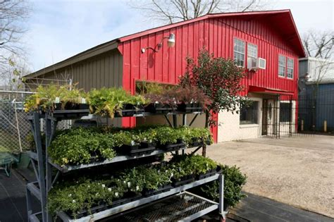 garden center for edibles sprouts in acres homes houston
