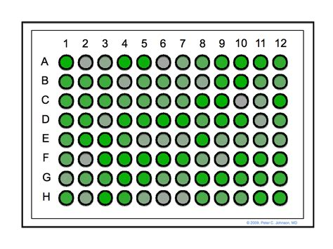 96 well plate template pdf
