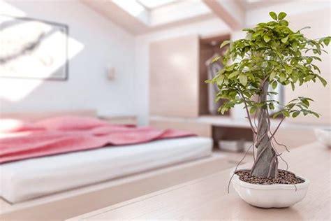 imagenes religiosas feng shui c 243 mo decorar un dormitorio seg 250 n el feng shui 6 pasos