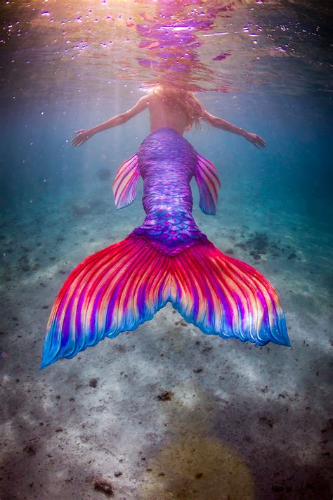 colorful mermaid tails mermaid tails of