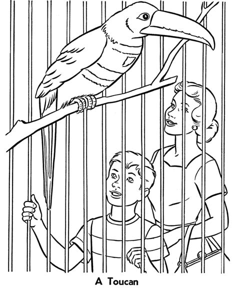 free coloring pages of preschool zoo animals