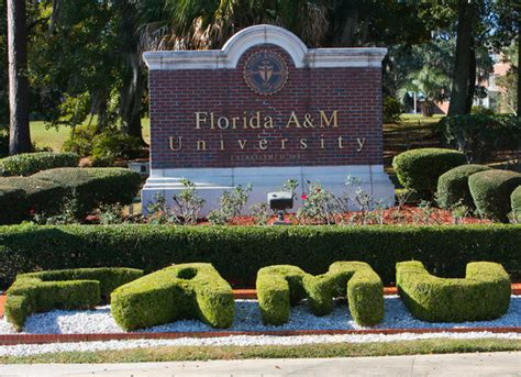 Florida A M Graduate Mba Courses 36 most affordable accredited msw programs in the south