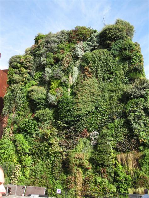 blanc s vertical garden in madrid buildipedia