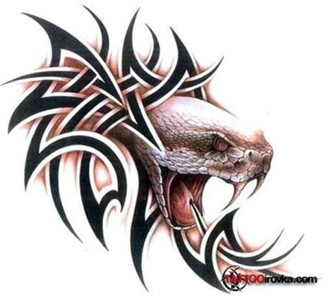 viper snake tattoo designs popular tattoos for and tribal tattoos on