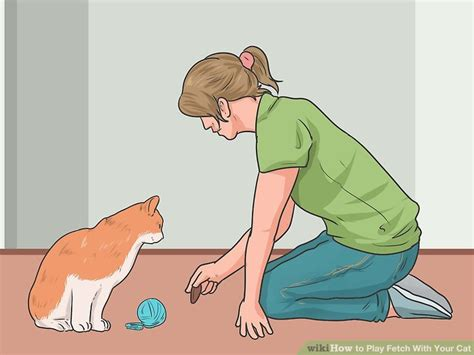 how to to play fetch how to play fetch with your cat 9 steps with pictures