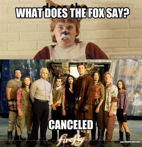 What Does The Fox Say Meme - ow right in the fandom