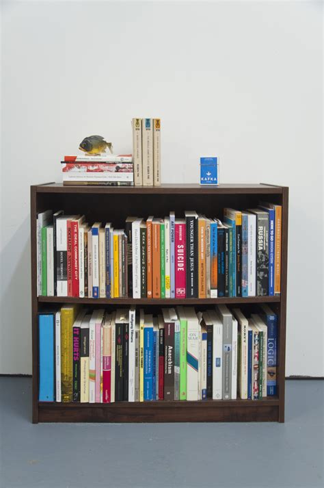 How To Shelf Books by Bookshelf Glasstire