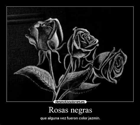 imagenes de rosas negras con frases de amor imagenes derosas negras con frases imagui
