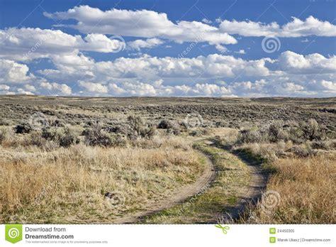High Desert sagebrush high desert in wyoming royalty free stock photo