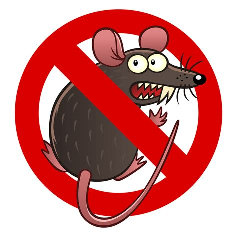 Avoid Rodents and Rodent Damage in Woodinville, WA