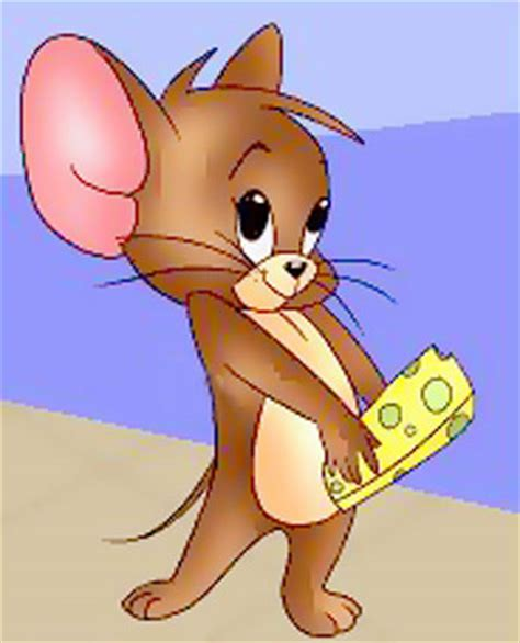best of tom and jerry wallpapers tom and jerry best pictures