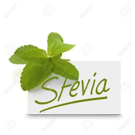 Stevia Set stevia set to rule sweetener market