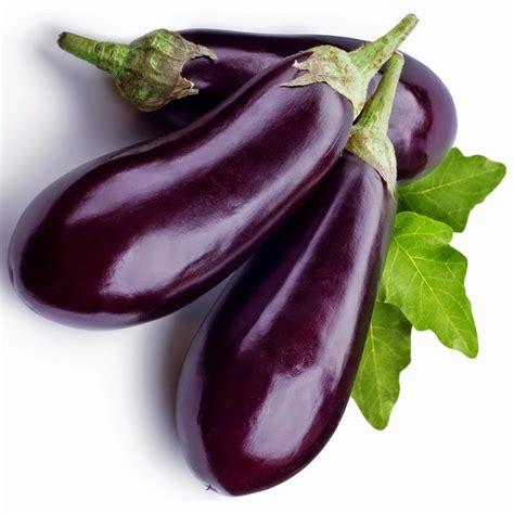 eggplant color plum eggplant hair color purple flower wedding hair dark