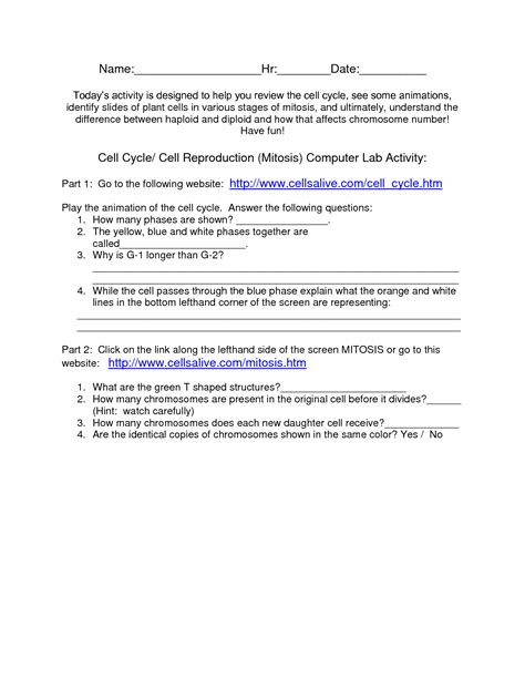 The Cell Cycle Worksheet Answer Key by 19 Best Images Of Mitosis Matching Worksheet Answers