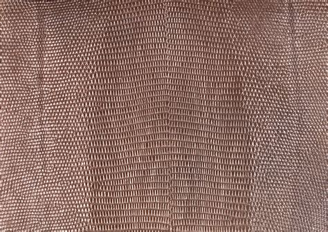 On Leather by Snake Leather Texture Background Image Snakes