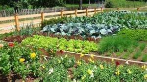 Large Vegetable Garden Layout Image Gallery Large Vegetable Garden Design