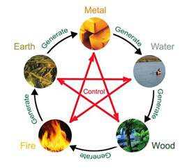 chinese zodiac elements five elements compatibility