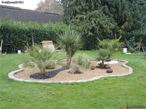 Parterre Avec Palmier by Parterre Stefimoun29 Les Galeries Photo De Plantes De
