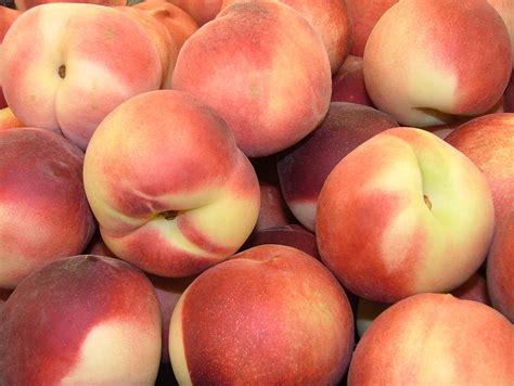 peach model peach model set 308 myideasbedroom com