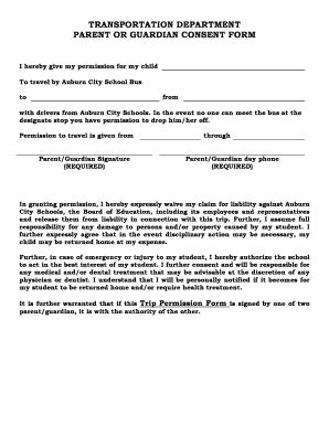 Child Travel Consent Form With One Parent Templates Fillable Printable Sles For Pdf Word Parent Guardian Consent Form Template