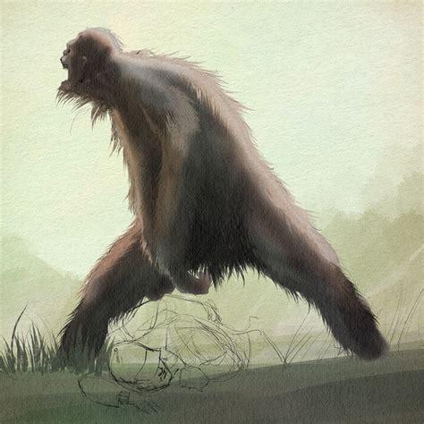 type in bigfoot types bigfoot411