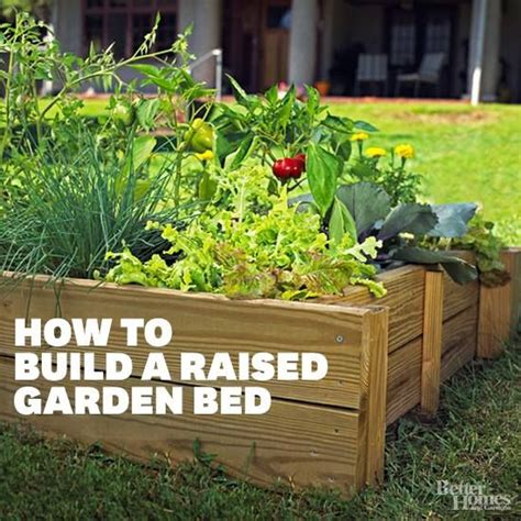 how to build an elevated garden bed 17 best images about my garden if i didn t kill plants