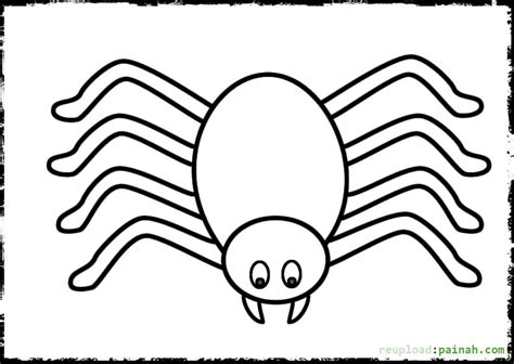 spider coloring page spider coloring pages to and print for free