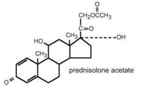 omnipred prednisolone acetate side effects