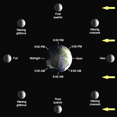phases of the moon diagram for phases of the moon lunar cycle diagram shapes pictures