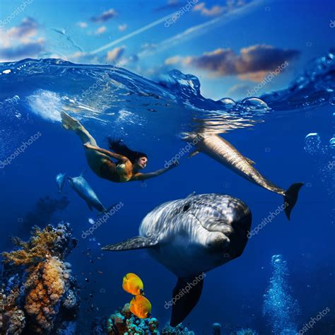 colorful dolphins colorful underwater coral with dolphins fish and