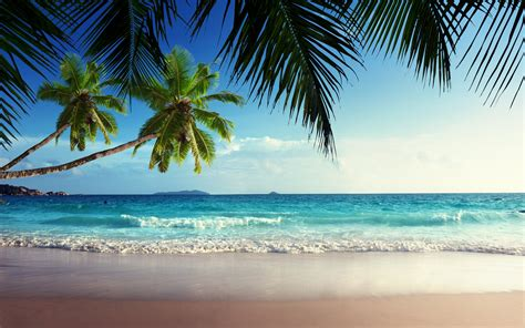 tropical island paradise pin paradise tropical island hd wallpaper place on pinterest