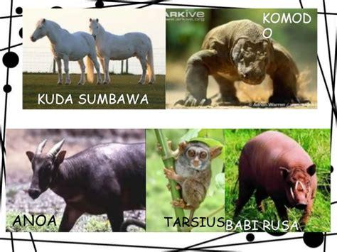 proposal membuat lion contoh hewan mamalia dan cirinya police 11166