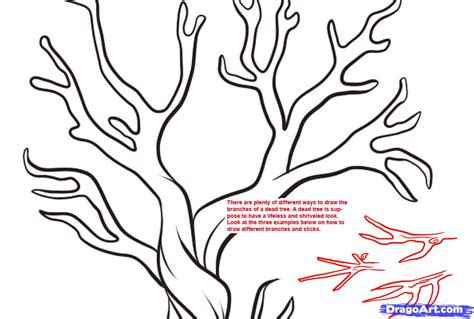 how to draw doodle draw tree branches drawing how to draw a dead tree stepstep