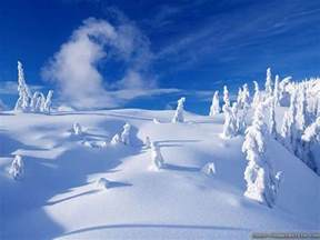 snow images snow winter wallpapers wallpaper cave