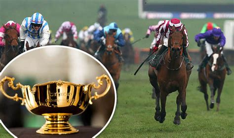 Cheltenham Gold Cup Sweepstake - grand national sweepstake kit download kit with full list of runners racing sport