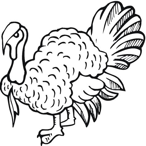 free printable coloring pages turkey free printable turkey coloring pages for