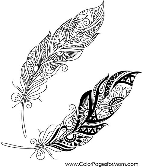 feather coloring page advanced coloring pages feather coloring pages