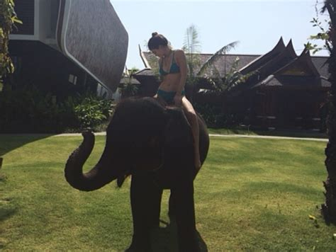kim kardashian and elephant photos kim kardashian spooked by baby elephant mocked by