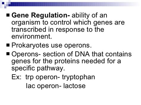 section 12 4 mutations answers study guide chapter 12 section 4 gene regulation and